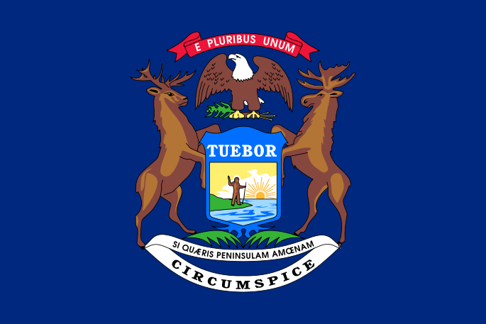 State of Michigan flag generic 061516_222449