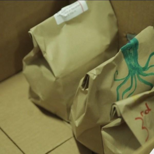 bag-a-thon-im-kids-3rd-meal-program_47476