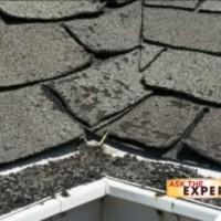 roof_326539