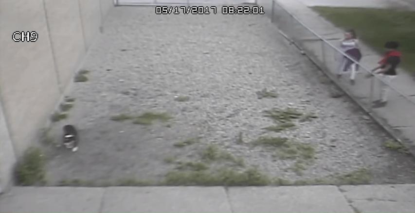 Mackie surveillance video 051817_339997