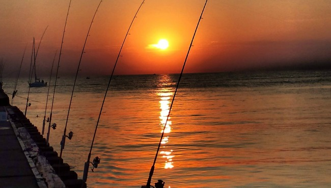 sunset-with-fishing-poles_351268