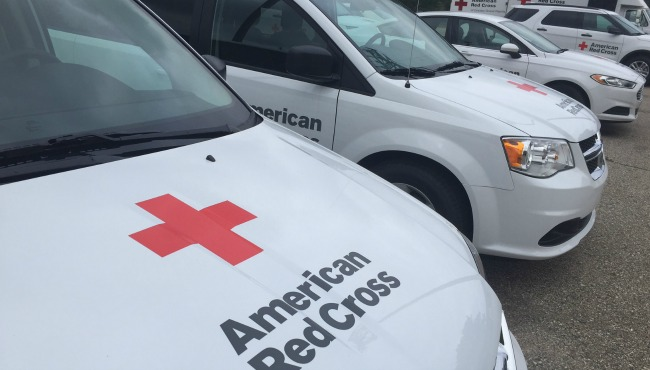generic-american-red-cross_244672
