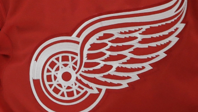 generic detroit red wings logo_413246