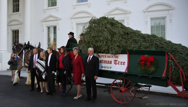 Melania Trump White House Christmas Tree 112117_436921
