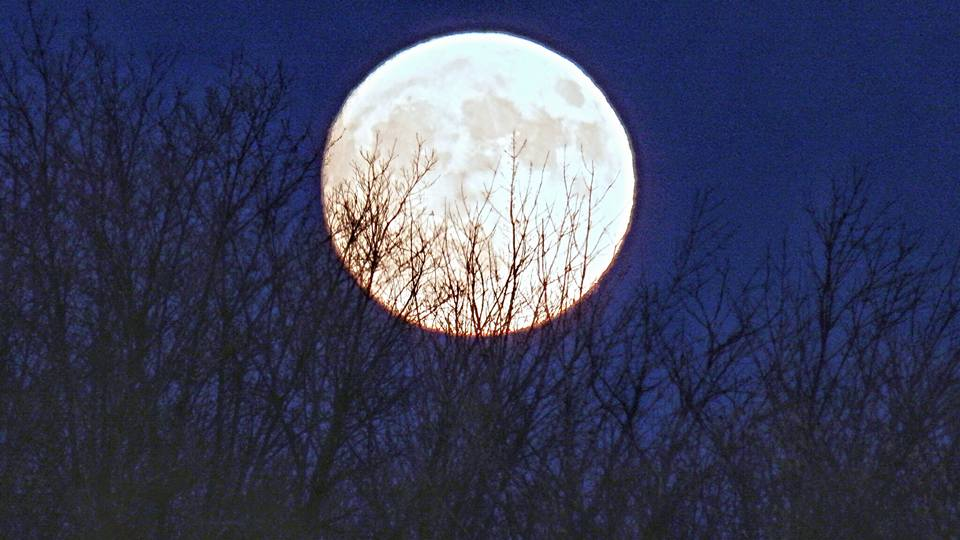 NOT SIZED supermoon-ithaca-111316_260803
