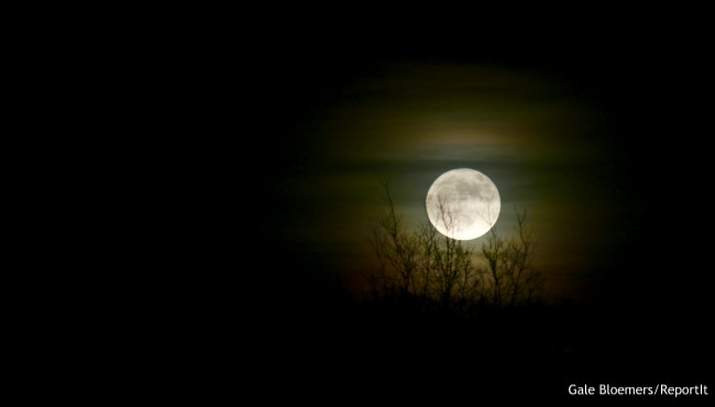 Supermoon over alto Gale Bloemers 120317_442585