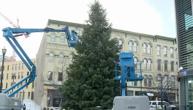 Grand Rapids Christmas tree 010818_457749