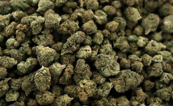 marijuana generic_1524156870614.jpg