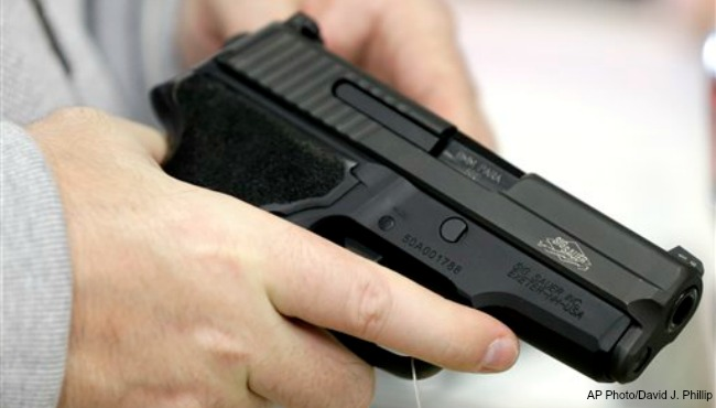 generic gun AP 010515_179442