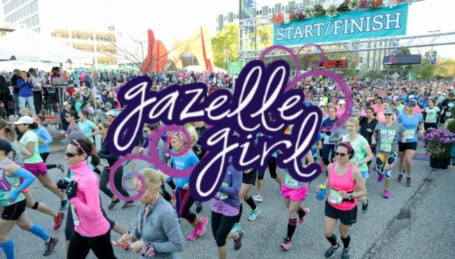 GAZELLE featured_65195