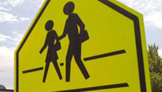 generic school-crossing-650_1523844135097.jpg