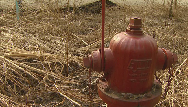 generic fire hydrant_1520649916587.jpg.jpg