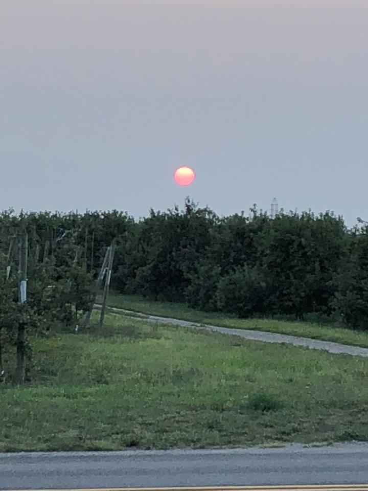 Sunset Smokey over orchard at Steffen house, by Julie 8 13 18_1534243904125.jpg.jpg