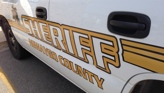 generic newaygo county sheriff's office_1530735952086.JPG.jpg