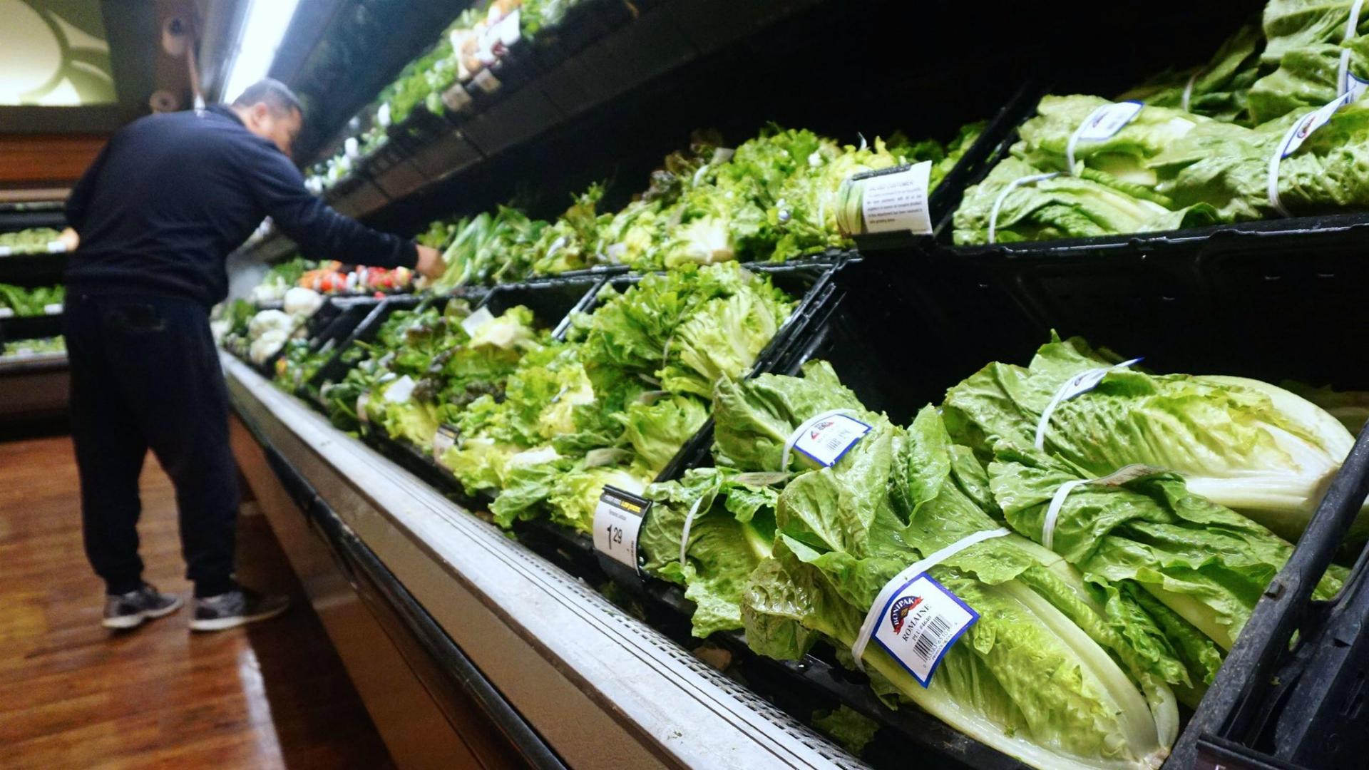 generic romaine lettuce_1542765695991.jpg.jpg