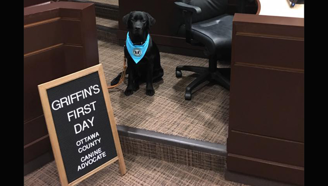 griffin ottawa county court advocate dog 112718_1543358363513.png.jpg