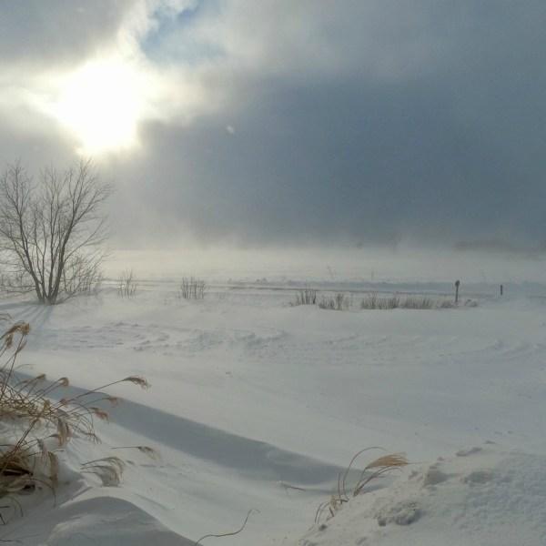 cold snow holland 012919_1548800606122.jpg.jpg