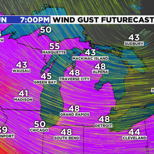 Wind gust Futurecast great lakes_1550870091626.png.jpg