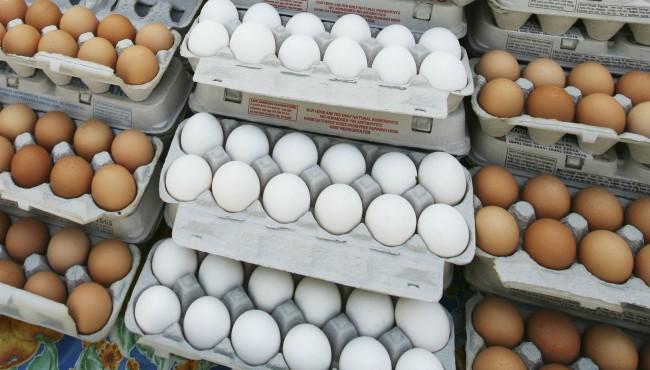 chicken eggs generic AP 051408_1552693517001.jpg.jpg