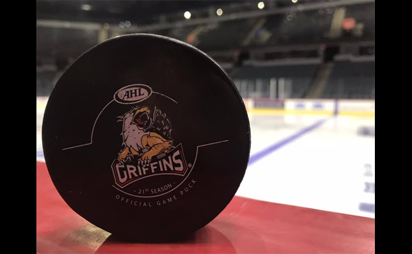 Grand Rapids Griffins generic 101218_1539338471484.png.jpg