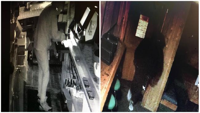 Smyrna Bar burglary 042319_1556042573148.jpg.jpg