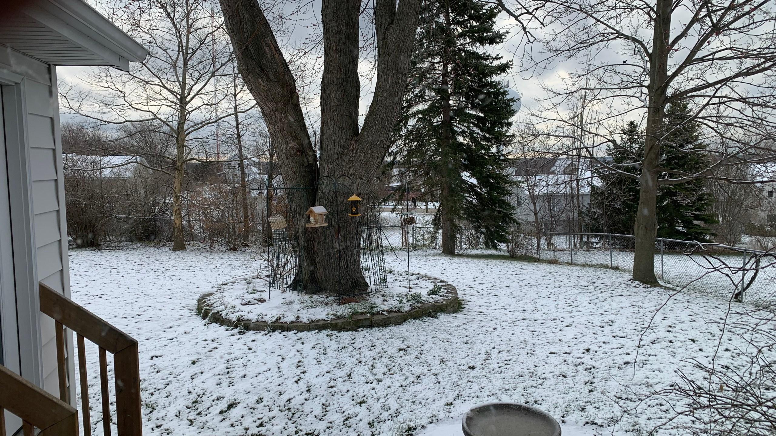 Snow backyard 4 11 19_1554990798883.JPG.jpg