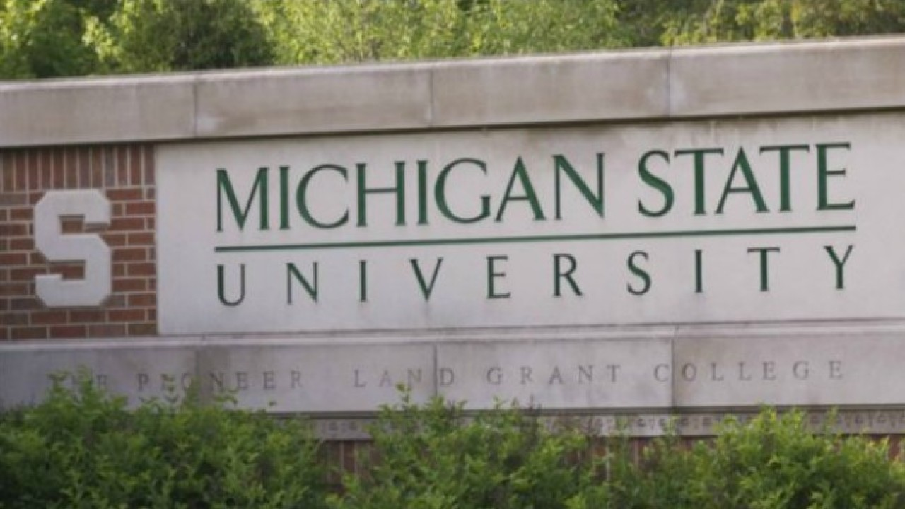 Ransomware attack threatens MSU student data | WOODTV.com