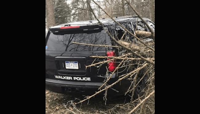 walker police cruiser damaged by tree edited 041119_1555009696474.png.jpg