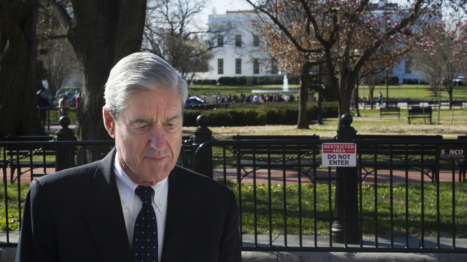 trump russia probe special counsel robert mueller 032419 AP_1553456360442