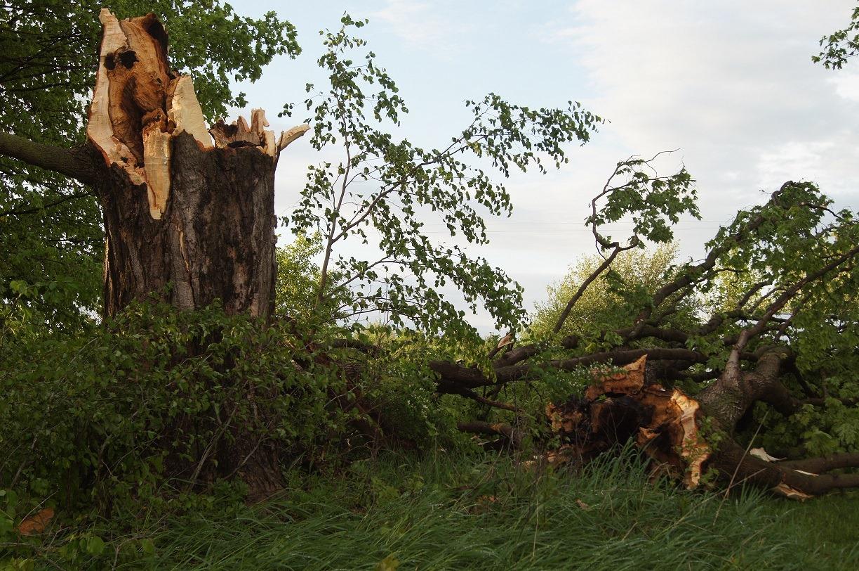 Tornado Touchdown in Barry Co