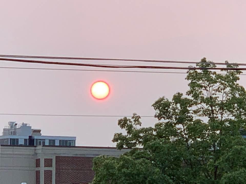 Sun - Smoky - Bill pic. on Washington Streete_1559278472106.jpg.jpg