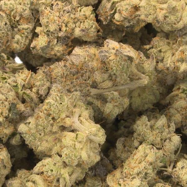 generic marijuana generic medical marijuana_1557275923820.jpg.jpg