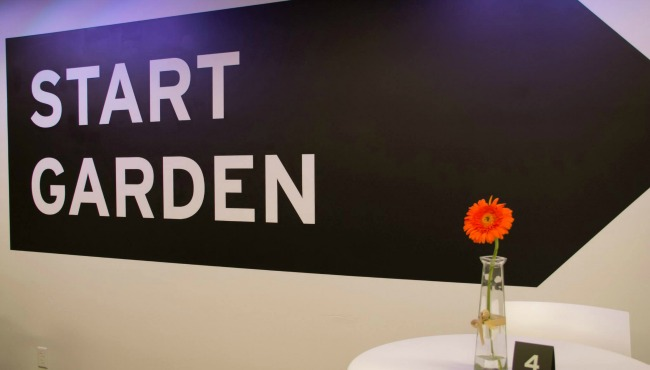 start garden 020915_75515