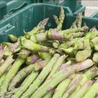 asparagus generic 06122019_1560378099517.jpg.jpg