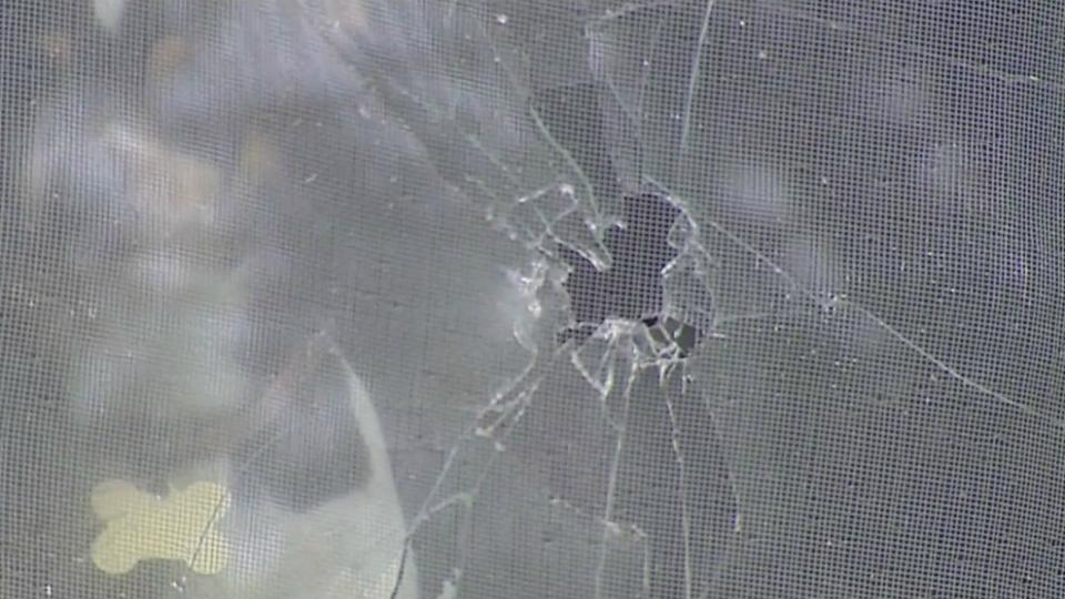 Fennville-area shootout damage