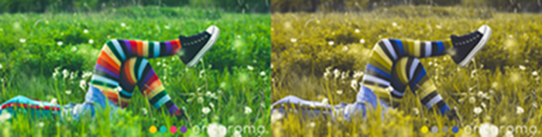 A colorblind and non-colorblind comparison of a person resting in a field