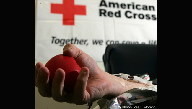 Hand squeezing ball during blood donation