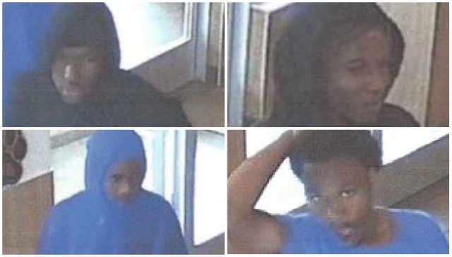 PD: 4 sought in gun thefts from Montcalm Co. store