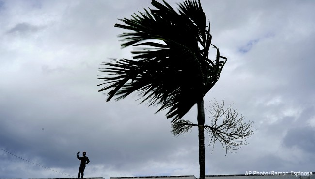 Man standing on roof next to palm tree blowing in wind