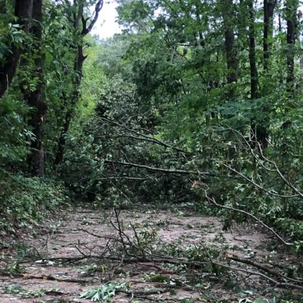 ada township dogwood court storm damage