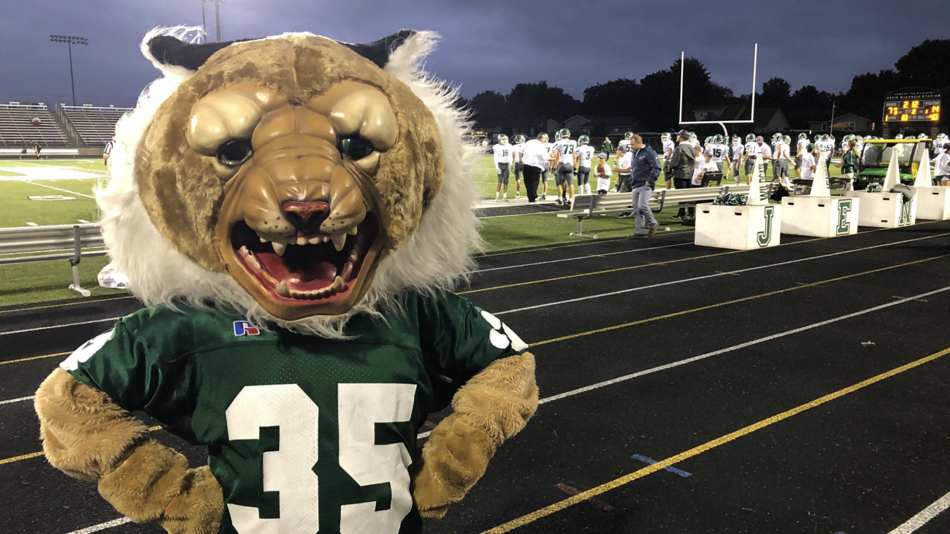 football frenzy jenison wildcats hamilton st. thomas more