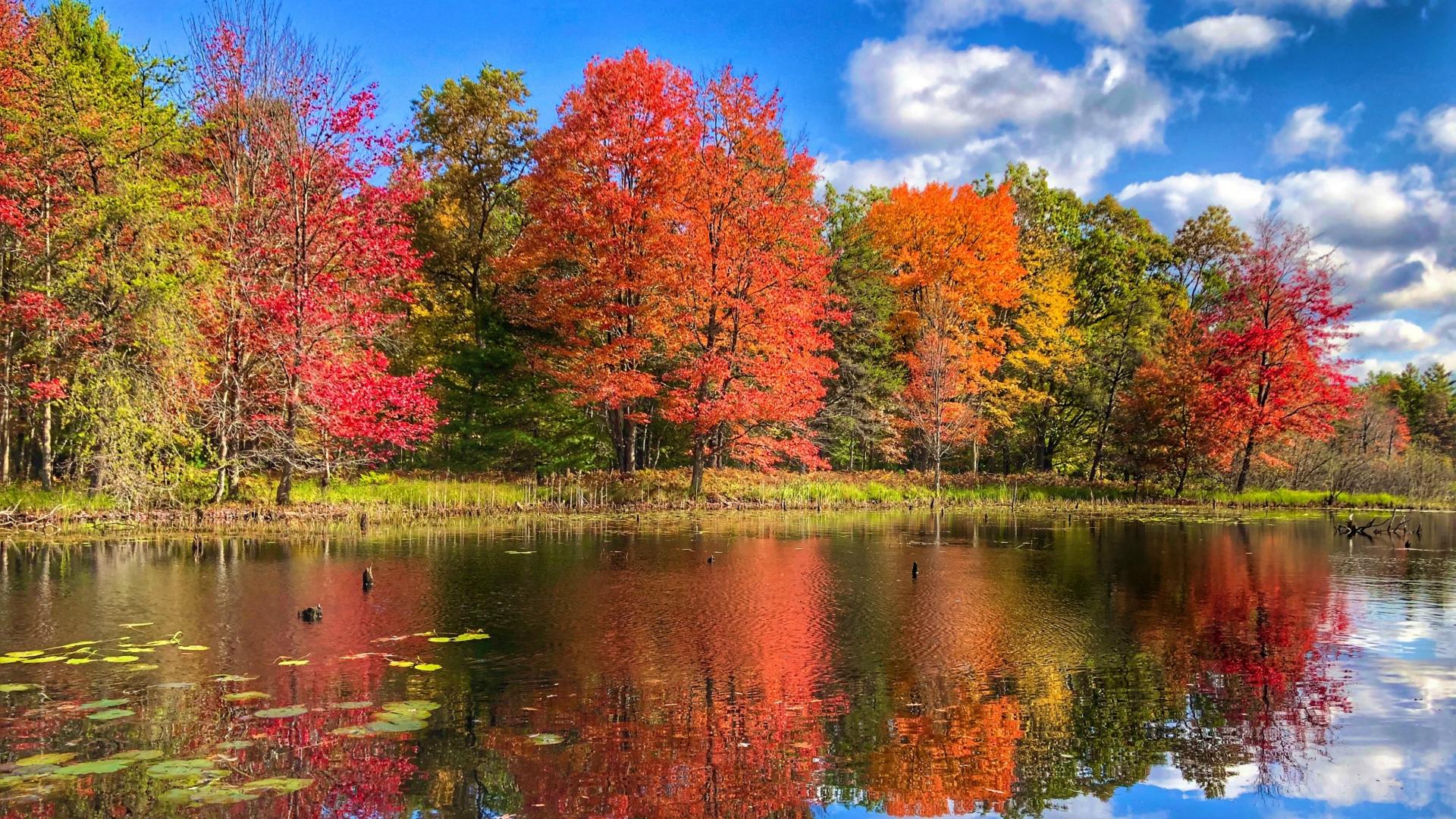 fall colors lake county