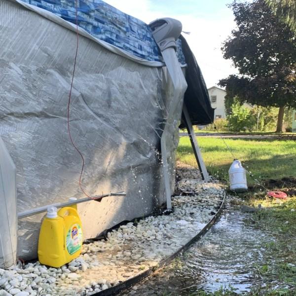 wayland crime spree pool damage