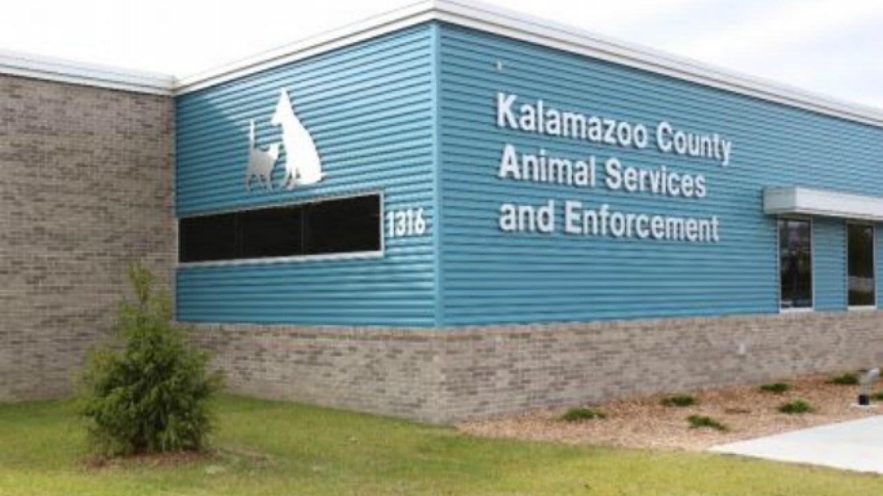 Kalamazoo County Opens New Animal Shelter Woodtv Com