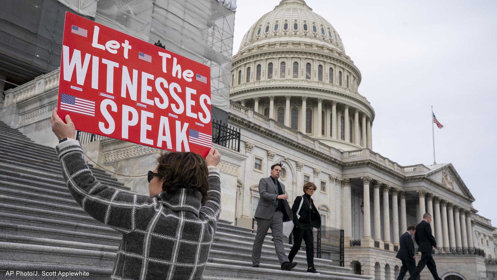 impeachment demonstrator