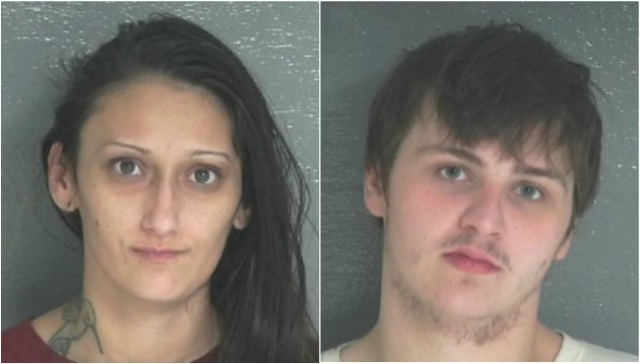2 jailed, 1 still sought in Paw Paw theft attempt