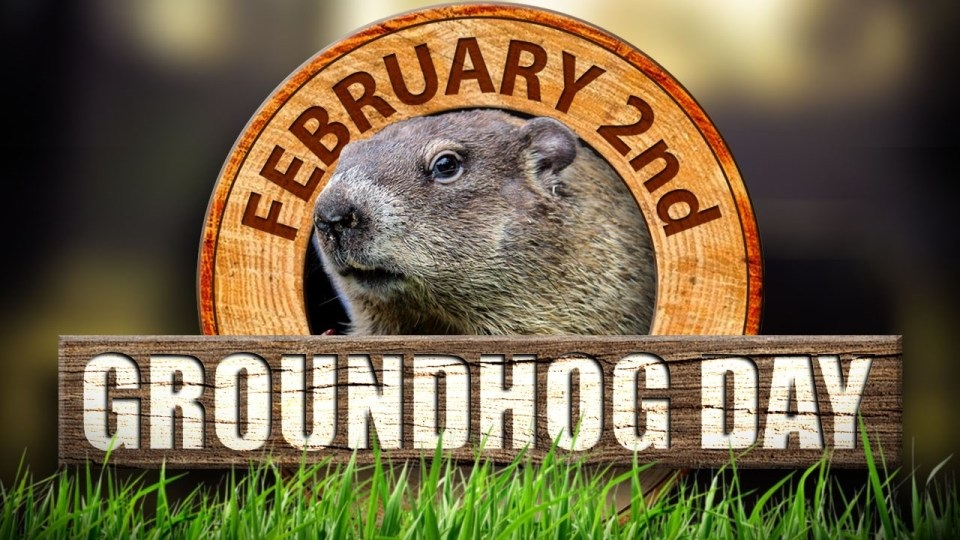 It's Groundhog Day! | WOODTV.com