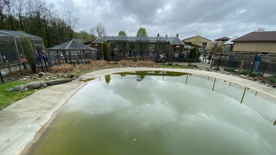 Boulder Ridge Wild Animal Park in Alto on its opening day of the season on May 15, 2020.