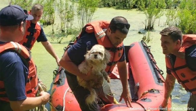 Crews rescuing a dog from the Kleinstuck Preserve on Aug. 8, 2020. (Courtesy of the Kalamazoo Department of Public Safety)