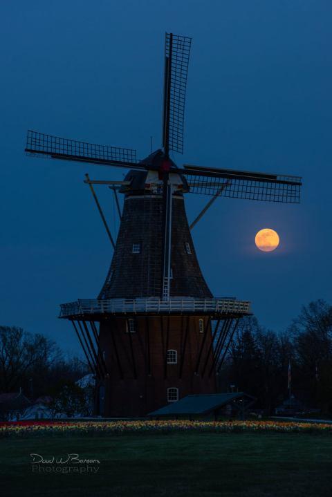 David-Behrens-supermoon-DeZwaan-Windmill